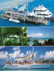 Cruise out to Fantasea Reefworld Pontoon, then spend a day sailing the Whitsunday Islands.