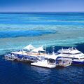 Sailing, Reef and Dive Adventure