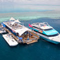 Hamilton Great Barrier Reef Package
